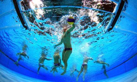 Water-polo – Le Nautic Club Angérien, comme un poisson dans l'eau
