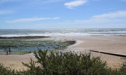 Comment visiter la Vendée en quelques jours ?