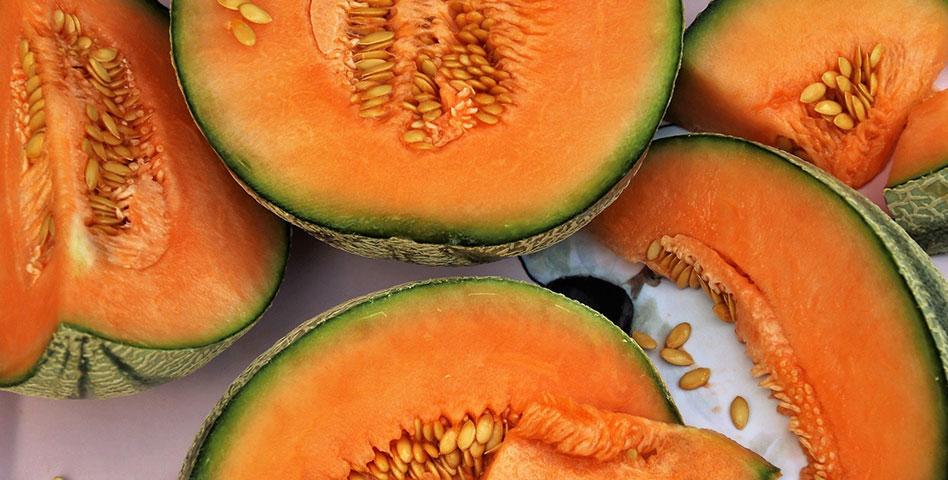 Le melon charentais, une spécialité gourmande regorgeant de bienfaits