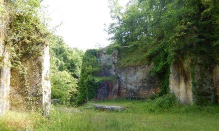 Les carrières de pierre de Crazannes, le site nature en plein Saintonge