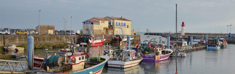 port cotiniere